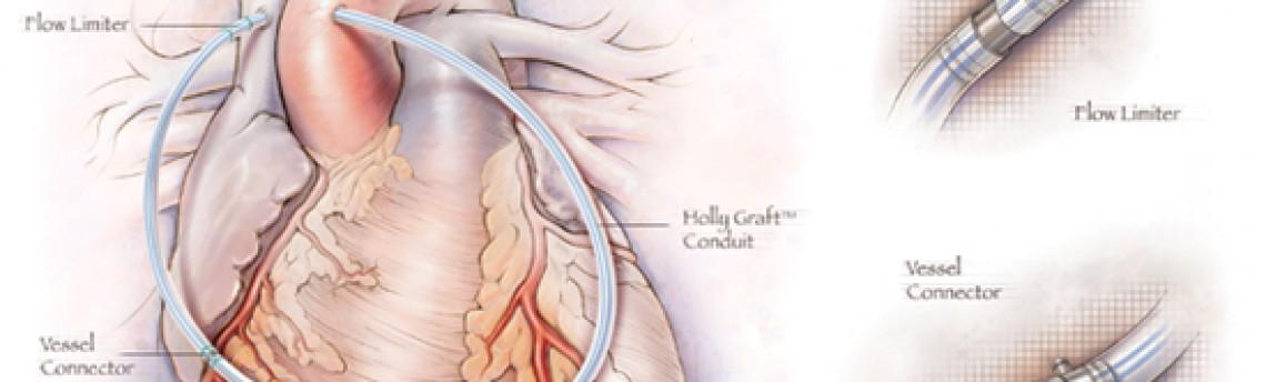 What training do medical illustrators receive?