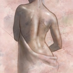 Draped Nude Illustration