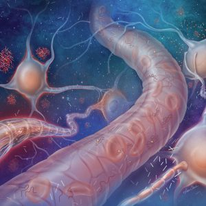 Alzheimer's Markers in the Blood